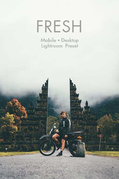 fresh lightroom mobile presets cover