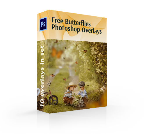 free butterfly overlay photoshop cover box