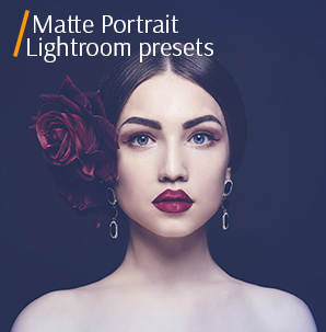 top free portrait lightroom presets