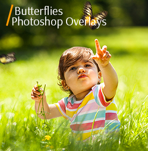 watercolor overlay butterflies photoshop overlays cover kid