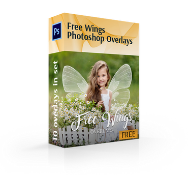 fairy wings overlay free cover box
