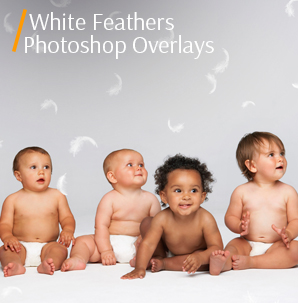 watercolor overlay white feathers photoshop overlays cover kids