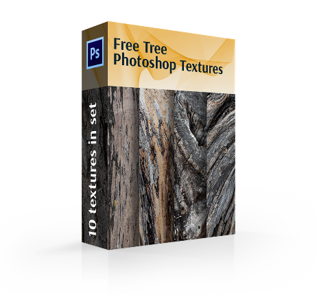 texture for photoshop Tree free cover box
