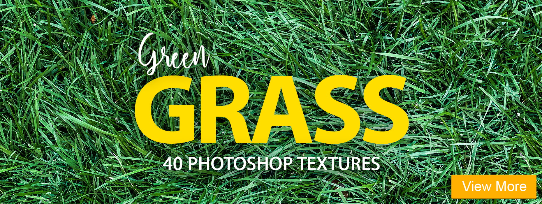 grass texture free photoshop vintage portrait lightroom presets banner girl