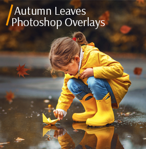 leaves overlay photoshop free autumn leaves collection cover girl