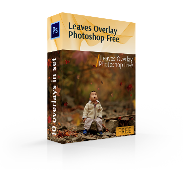 leaves overlay photoshop free cover box