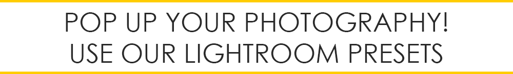 how to make sephia photo with lightroom