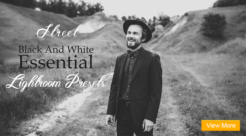 presets matte portrait collection
