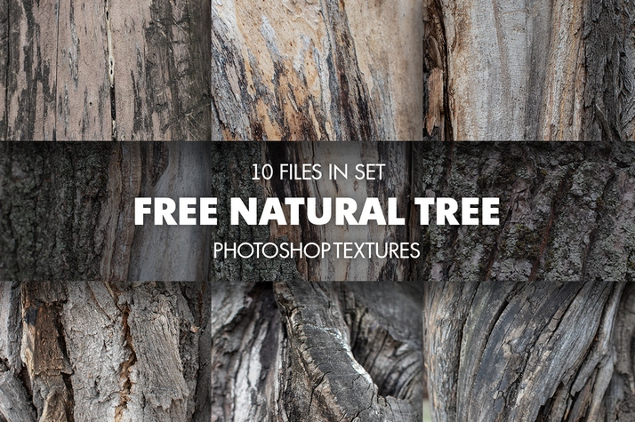 texture for photoshop Tree free poster Tree collection