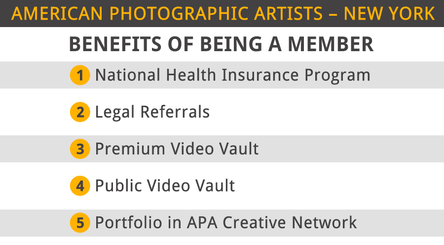 american photographic artists new york benefits