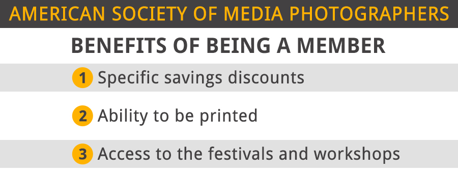 american society of media photographers benefits