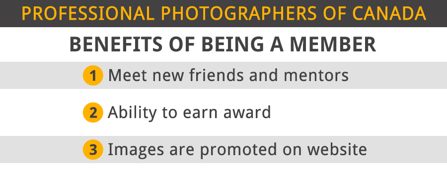 professional photographers of america benefits