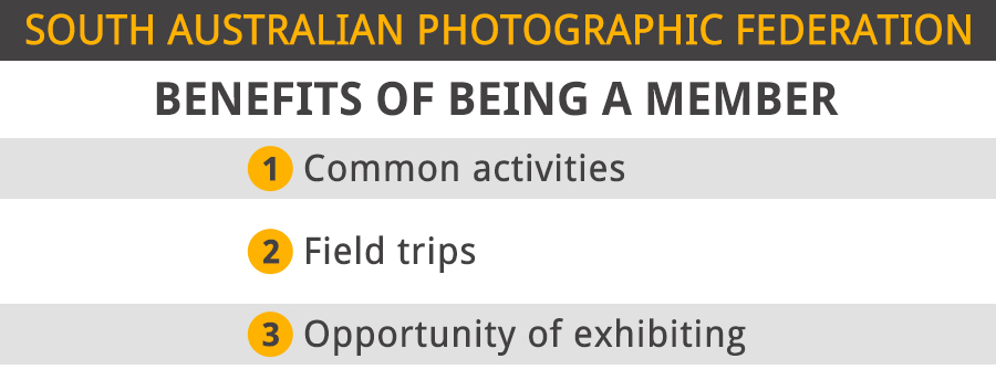 south australian photographic federation benefits