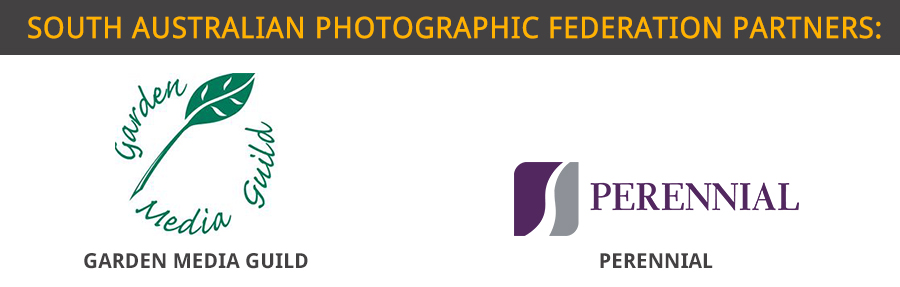south australian photographic federation partners