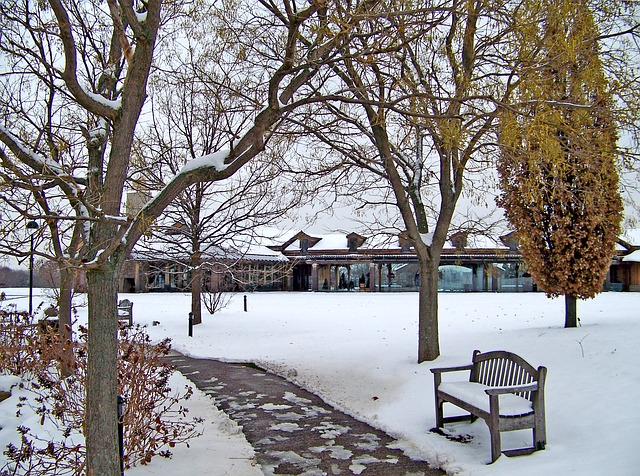 Winter photo idea - use benches covered with snow