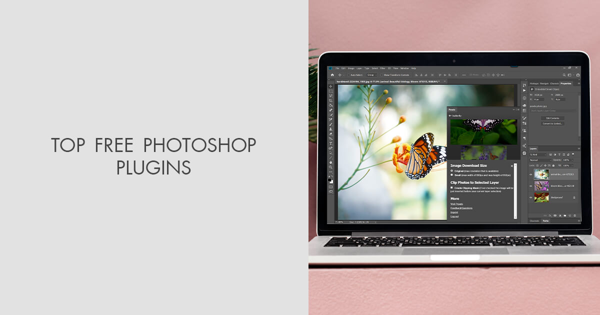 20 FREE Photoshop Plugins for Photographers to Get Amazing Results