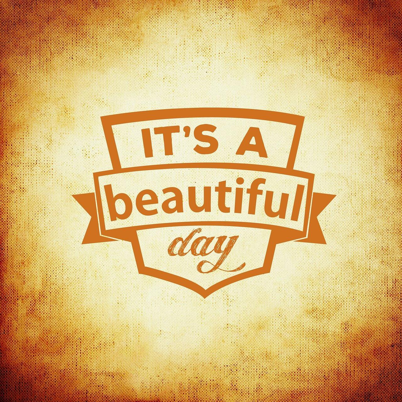 Happy International beauty day!